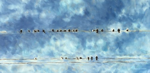 Flock of birds on a wire in front of blue clouded sky.