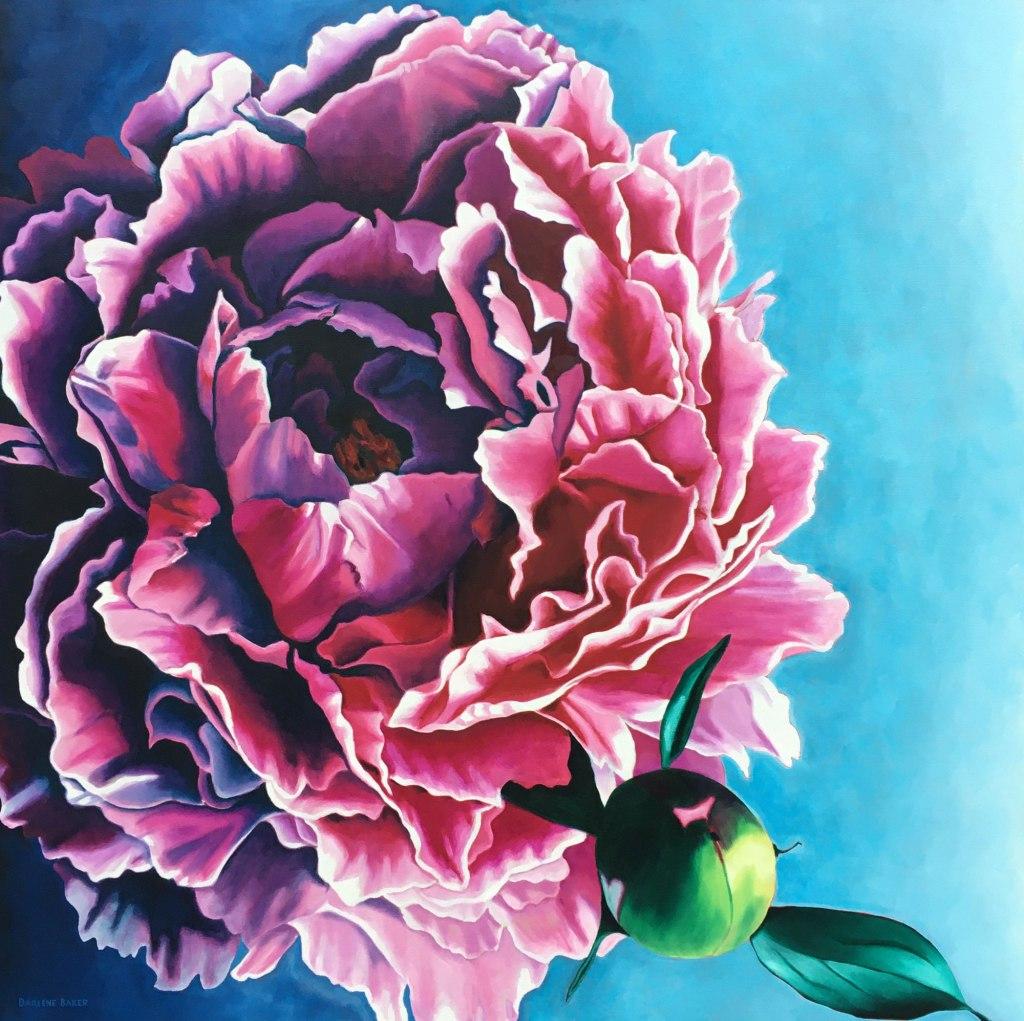 pink peony bloom and bud