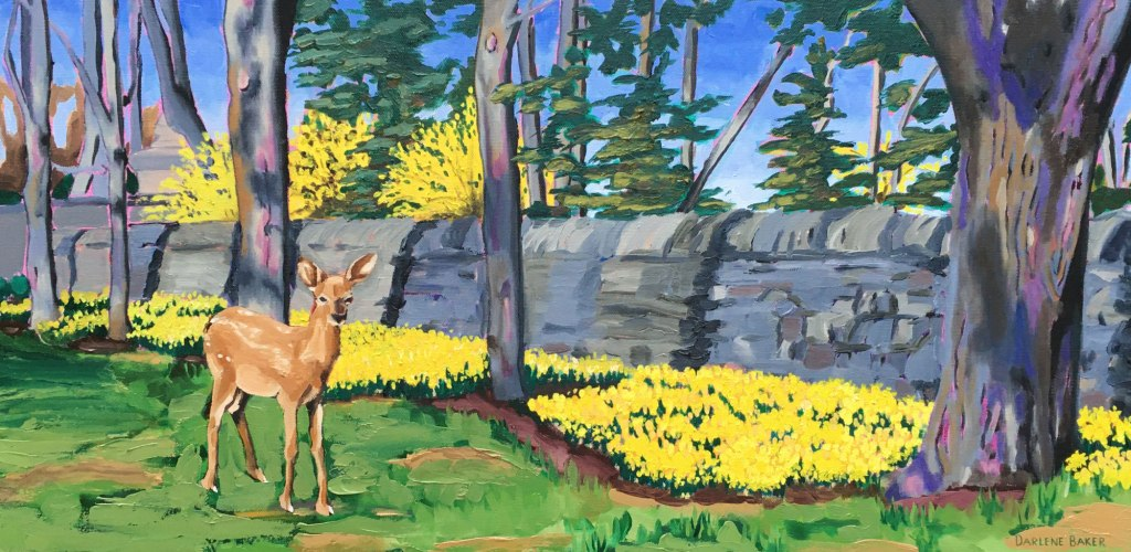 Fawn standing next to bed of daffodils along stone wall.